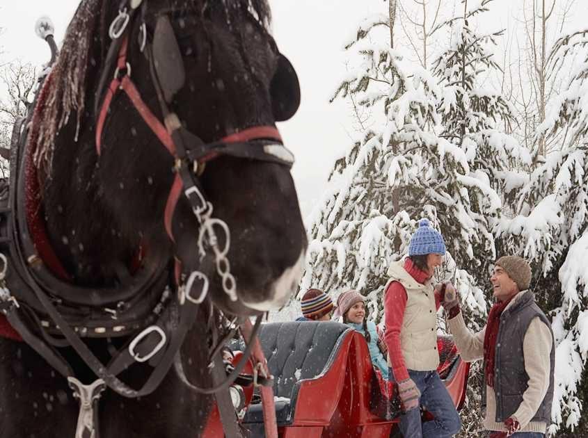 Breckenridge sleigh rides